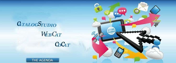 WebCat is a flexible, feature-rich platform that gives business to business and business to consumer companies the ability to quickly deploy a web store or catalog. As per business needs, the WebCat platform can be customized and integrated with the existing IT infrastructure such as ERP Systems, Order Management, and Pricing & Inventory Systems. http://www.tradingbell.com/web-cat-b2b-ecommerce-software/