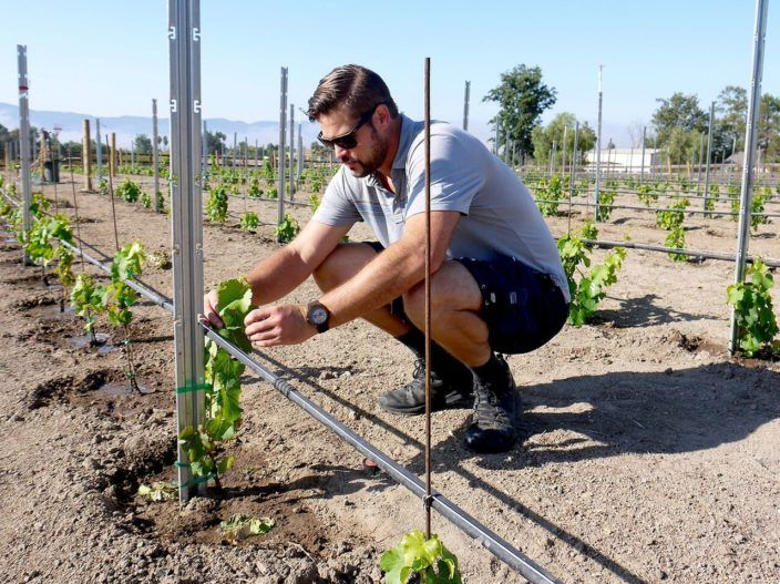 Former professional volleyball player Matt McKinney planted his first grapes in 2010, on a half-acre of horse pasture on his family's property in the Santa Ynez Valley. Photo by Laurie Jervis. http://sbseasons.com/2017/12/tales-of-the-vine/ #SBWine #MattMcKinney #McKinneyWines #LaurieJervis #sbseasons #sb #santabarbara #SBSeasonsMagazine #CentralCoast #CoastalSeasons To subscribe visit To subscribe visit sbseasons.com/subscribe.html