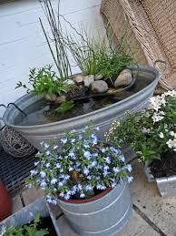 Die besten 25 zinkwanne bepflanzen ideen auf pinterest pflanzk bel au en herbstgarten und - Zinkwanne garten ...
