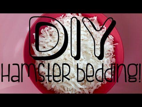 Best DIY Hamster Bedding | DIY Kaytee Clean & Cozy - YouTube