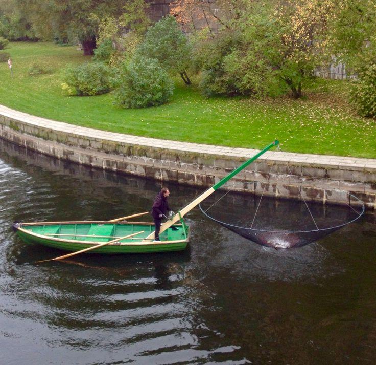 Fiske vid Riksbron i Stockholm
