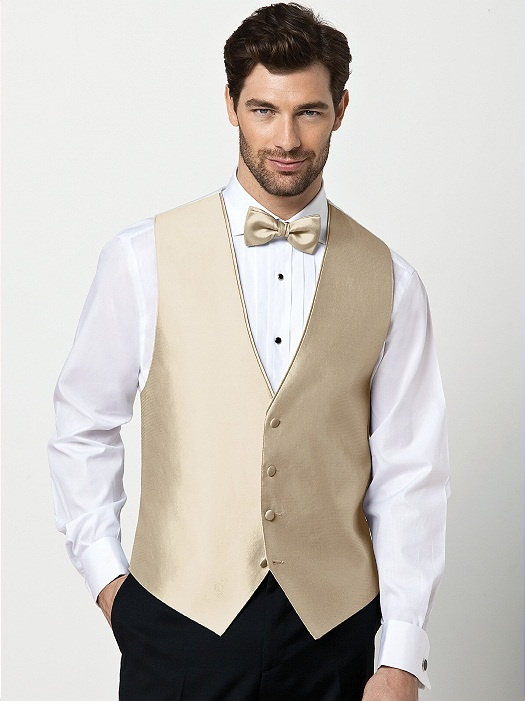 Champagne vest. Just change bow to a tie and pants and shirt to grey.