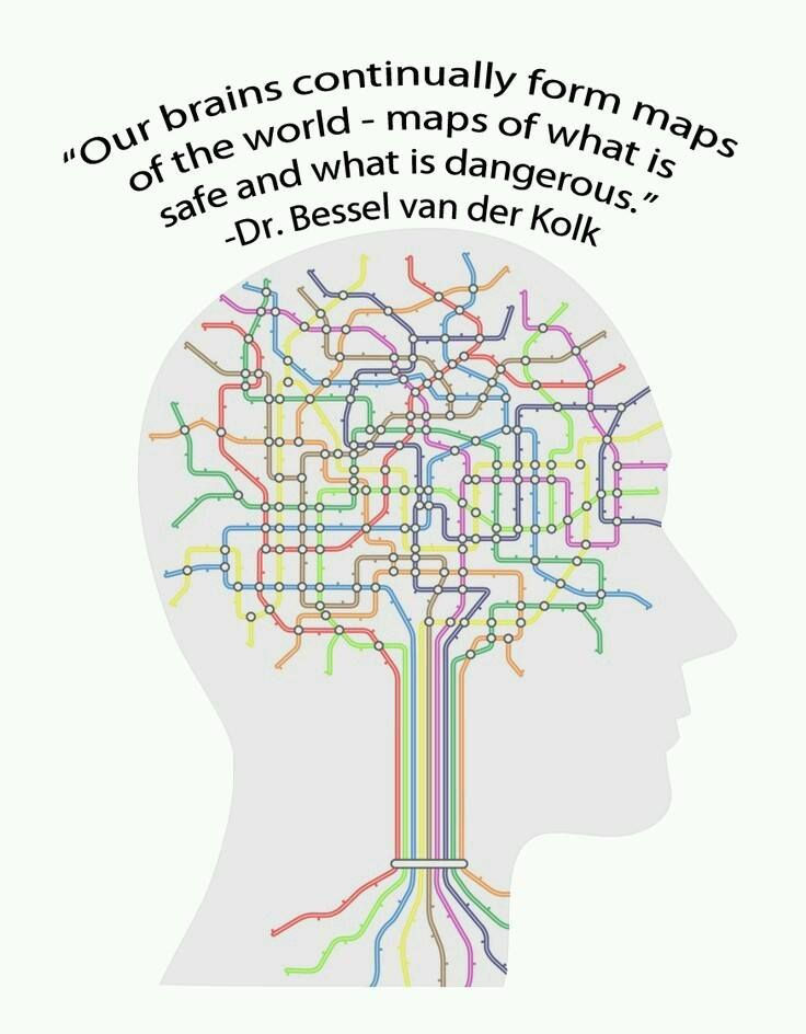 Our brains continually form maps of the world - maps of what is safe and what is dangerous - Dr Bessel van der Kolk, Complex PTSD expert