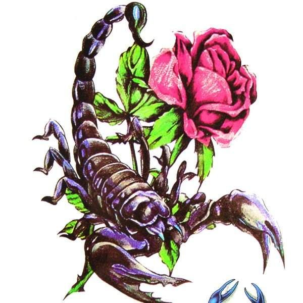 scorpion with rose tattoos - Google Search