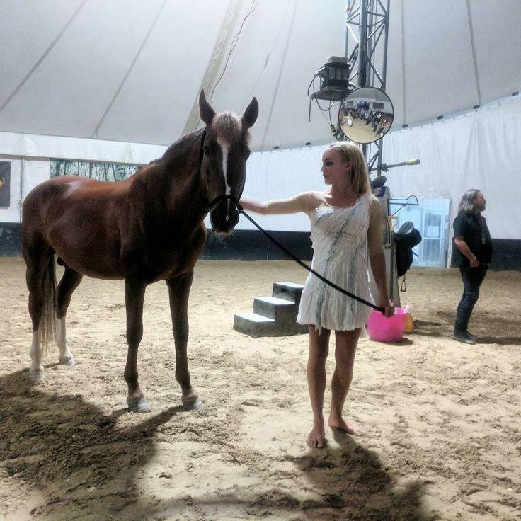 Cavalia Odysseo! #Odysseo #exploringthisbluedot #tennessee #nashville #equestrian #show #cirquedusoleil  #nashvillescene #horses #horse #arielist @cavalia @odysseo