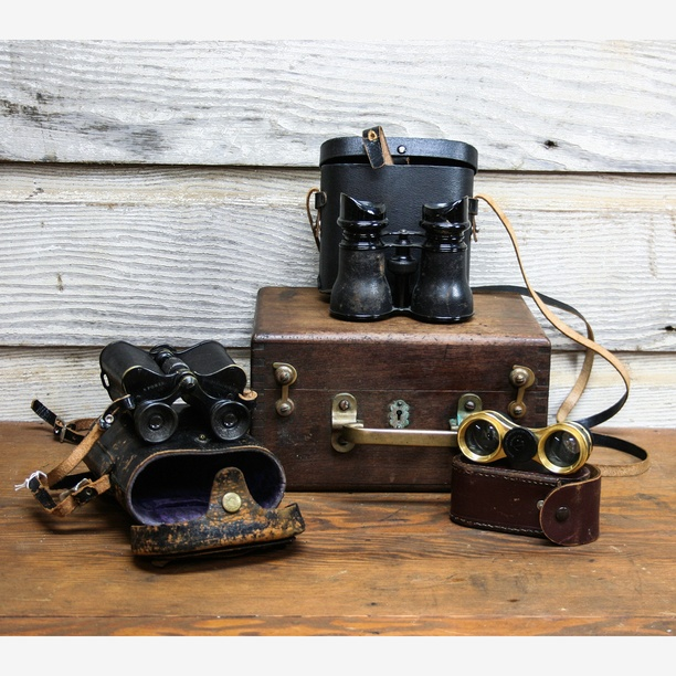 vintage binoculars just love softened with blooms