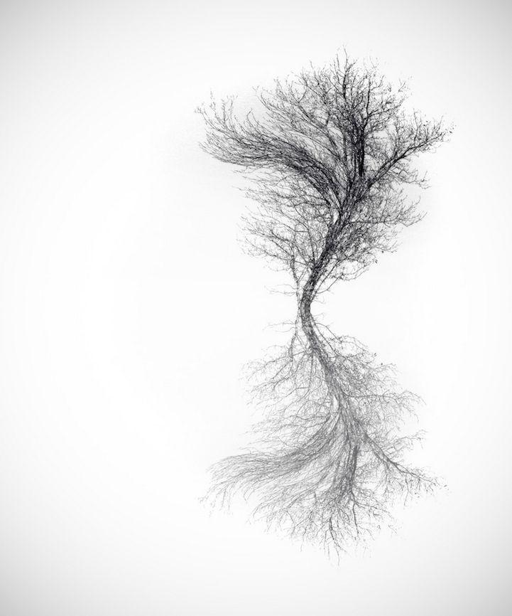 Hungarian photographer Adrienn Balaskó is a producer of amazing minimalist photography.