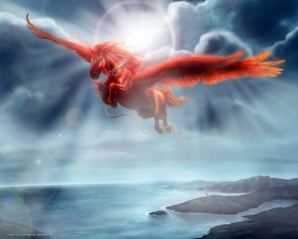 Magical Fantasy Hd Wallpapers That Will Take Your Breathe: Fantasy Winged Horse Wallpaper Fantasy Winged Horse
