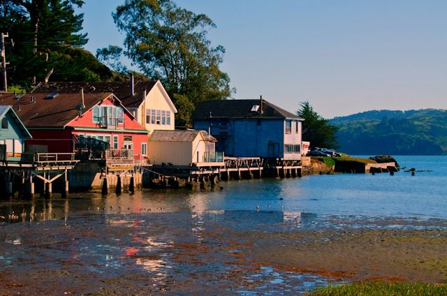 Tomales Bay where some of California's best oysters are harvested. Visit one of the many local oyster farms to try them fresh.