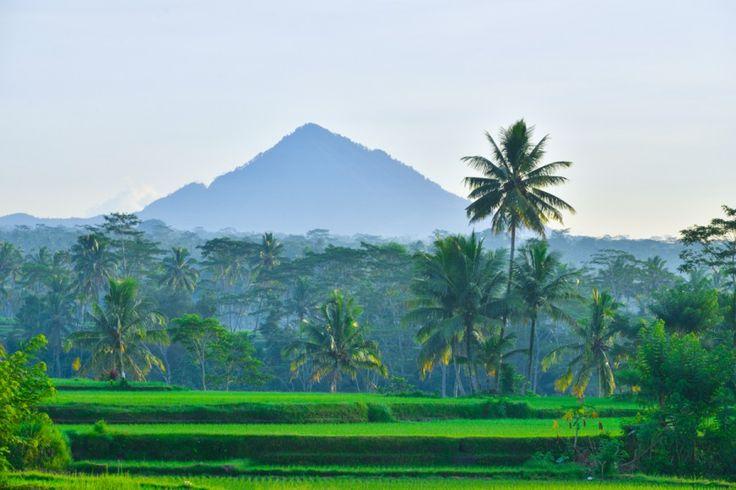 Explore Ubud and surrounding mountains with TAKSU Photography run by Masterclass Photographer David Metcalf