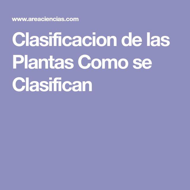 Clasificacion de las Plantas Como se Clasifican