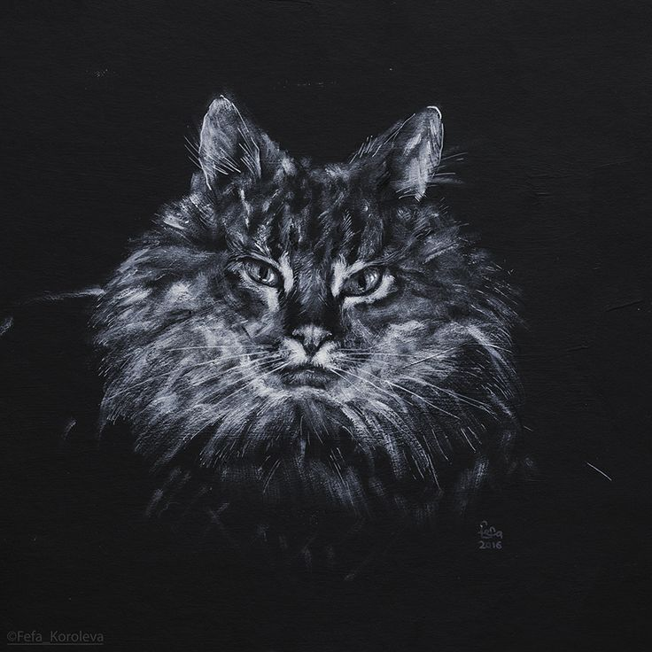 Кот / The Cat Materials: cardboard, acrylic, inc / Материалы: картон, акрил, тушь Size: 29x29cm /Размер 29х29см.
