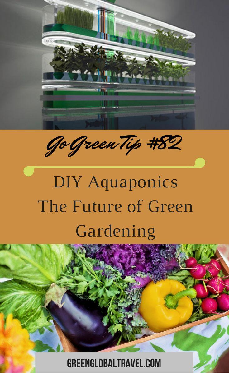 Learn about Aquaponics, a Millenium Development Goal. | Sustainable Agriculture | Aquaculture | Hydroponics | Eco-Friendly | DIY | Energy Efficient |