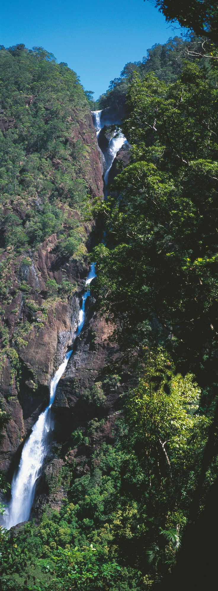 Elizabeth Grant Falls, Misty Mountains in Tully, Tropical North Queensland. The best place in Australia to go white water rafting! #nationalparks #tropicalnorth