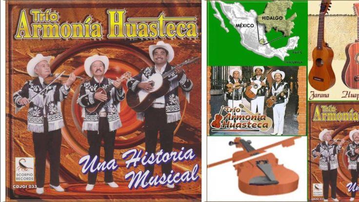 Mix Huapangos del Trio Armonia Huasteca