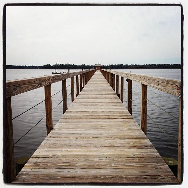 Walking the plank at Lowndes Grove - Charleston, South Carolina.