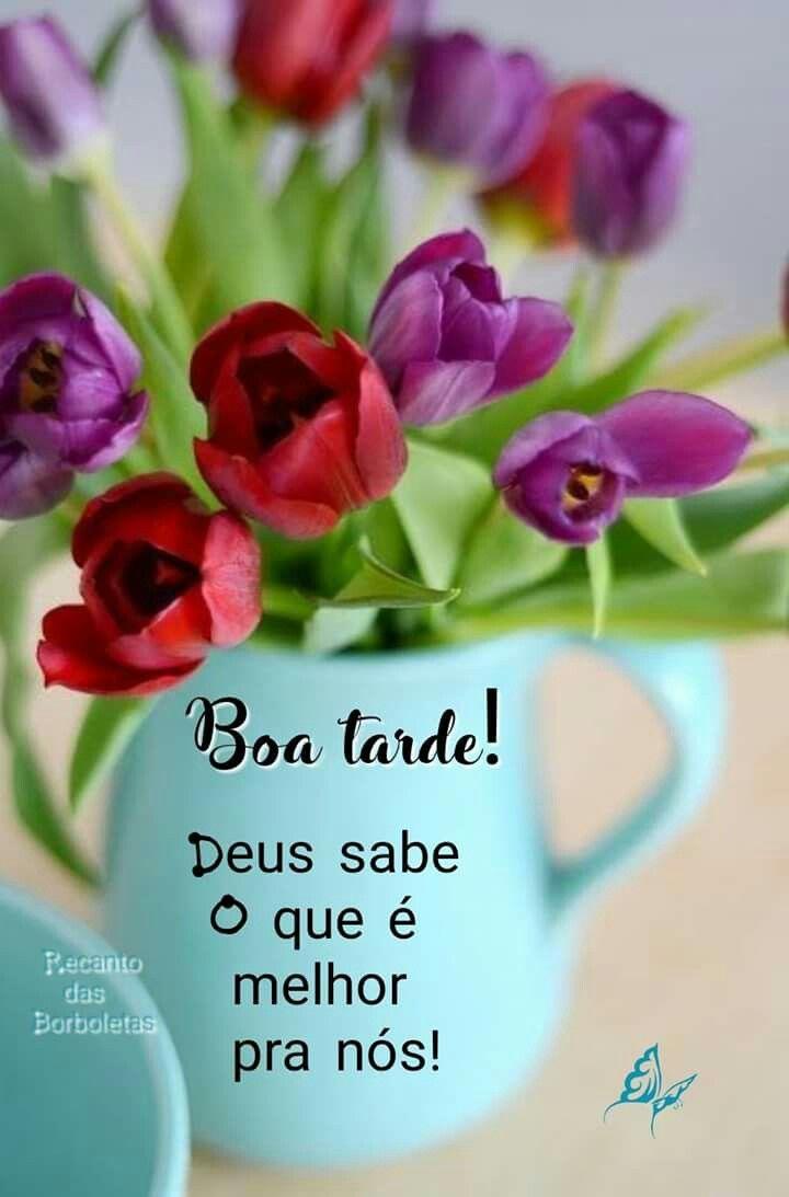 Pin De Celia Mendes Em Mensagens Boa Tarde Com Flores Mensagem