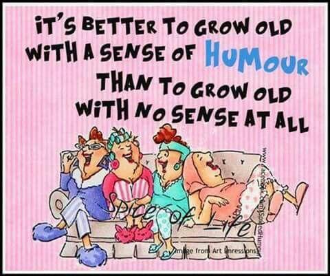 398 Best Funny Tidbits Images On Pinterest Ha Ha Funny