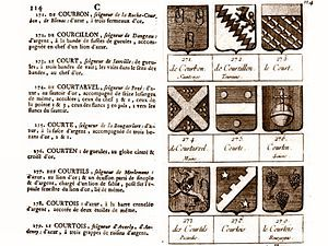 Exemple de source de qualité: le livre Armorial des principales maisons et familles du royaume, de Pierre-Paul Dubuisson, publié en 1757
