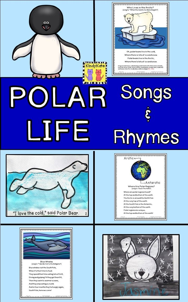 Explore Arctic and Antarctic life with these adorable songs and rhymes that will all add plenty of pizzazz to your polar life studies!  TpT$