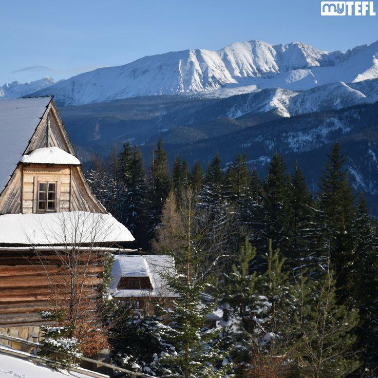 What TEFL destinations do you love the most in #winter? #December #Wintertime #skiing #snow #TEFL #teachabroad #travel #RTW #travellife #Asia #Europe #wintersun #skiresort #skilife #TEFLskiing #EFL #TESOL #getoutthere #winteriscoming