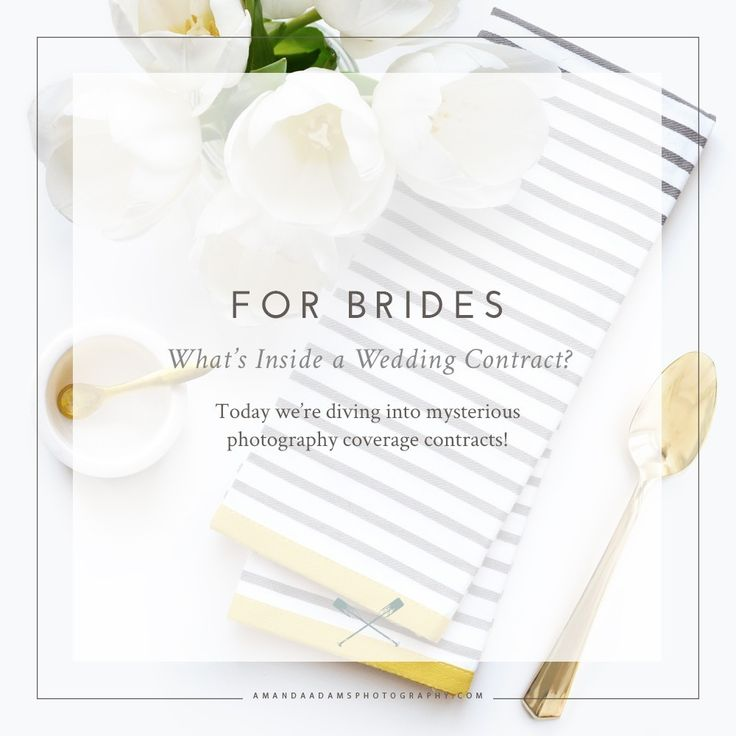 249 best Photographers \ Entrepreneurs images on Pinterest - wedding contract
