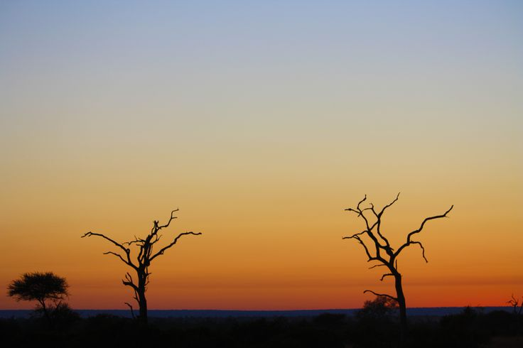 Another spectacular Kruger National Park sunrise on a game drive.