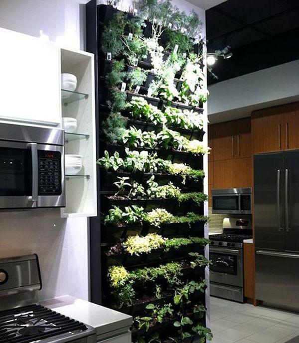 8. An indoor herb garden for your kitchen