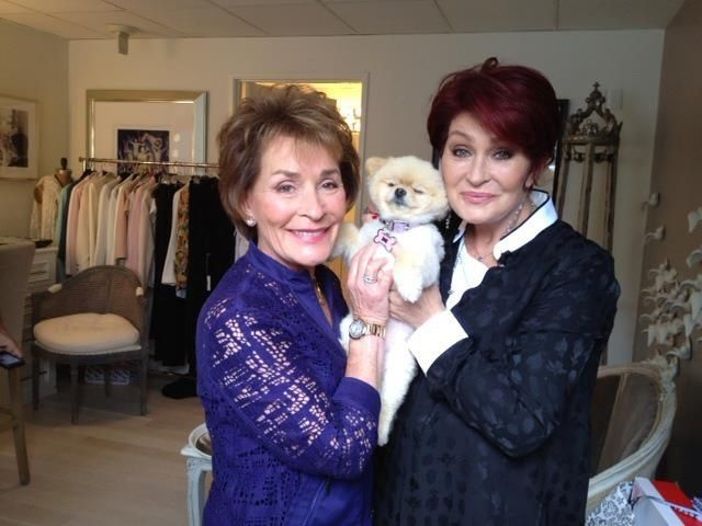 Cute Dog. Judge Judy looks good too!
