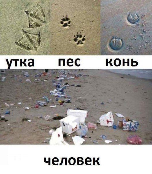 """СЛЕДЫ ЖИВОТНЫХ http://pyhtaru.blogspot.com/2017/05/blog-post_13.html   Читайте еще: =============================== ВСТРЕЧИ ОДНОКЛАССНИКОВ http://pyhtaru.blogspot.ru/2017/05/blog-post_69.html ===============================  #самое_забавное_и_смешное, #это_интересно, #это_смешно, #юмор, #следы, #человек, #мусор, #утка, #пес, #конь  Хотите подписаться на нашу газете?   Сделать это очень просто! Добавьте свой e-mail и нажмите кнопку """"ПОДПИСАТЬСЯ""""   Далее, найдите в почте письмо и перейдите по…"""