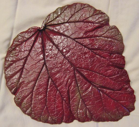 Concrete Leaf Casting by ConcreteImpressions on Etsy, $26.00