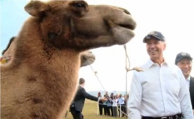 'Hump Day' party with camel cancelled at Minnesota college over fear of offending Middle East.  HOLY CRAP.  Really???