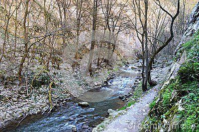 An awsome hicking trail near Cluj-Napoca.