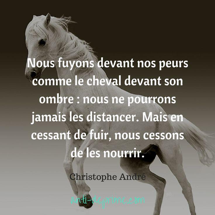 Nous fuyons devant nos peurs comme le cheval...  Christophe André