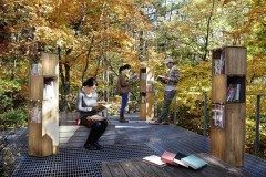 読書の秋は長野県軽井沢の紅葉図書館で過ごしてみませんか 軽井沢にある星野エリアハルニレテラスでは毎年秋に紅葉で美しく色づいた屋外のテラスデッキで読書を楽しめるイベントを開催 屋外のテラスにはオシャレなワイン箱の本棚が置かれていますよ() 素敵で知的な時間が過ごせそう tags[長野県]