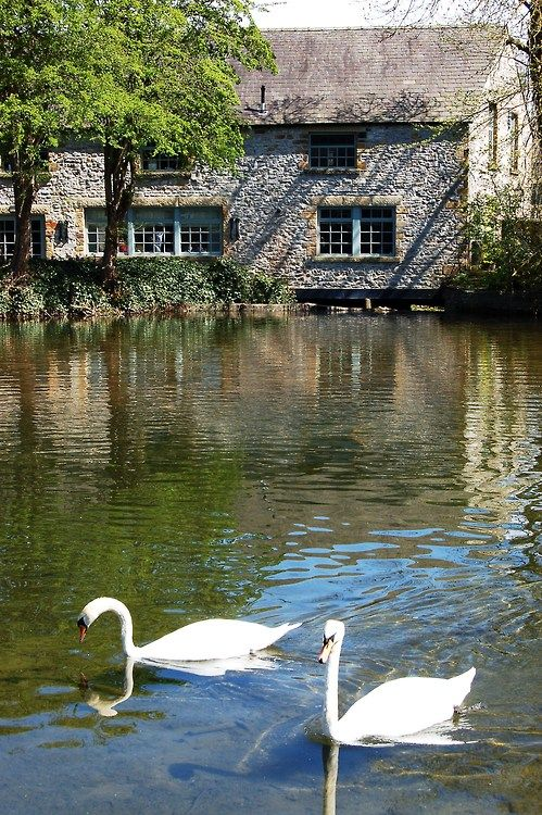 Lovely setting by the mill pond(?)