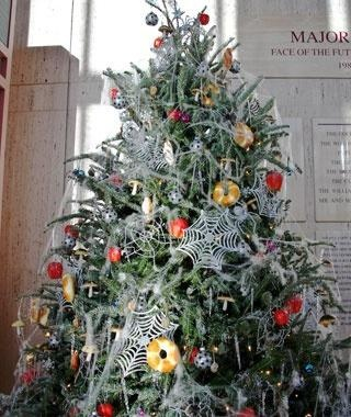Ukraine - This tradition harks back to a fairy tale in which spiders decorated the tree of a family too poor to afford proper yuletide ornaments. The rising sun on Christmas morning makes the tree sparkle and glisten in the same manner as modern lights and tinsel. Nowadays, Ukrainian Christmas trees are covered in spider webs made from various materials including crystal, paper, metal, and plastic.