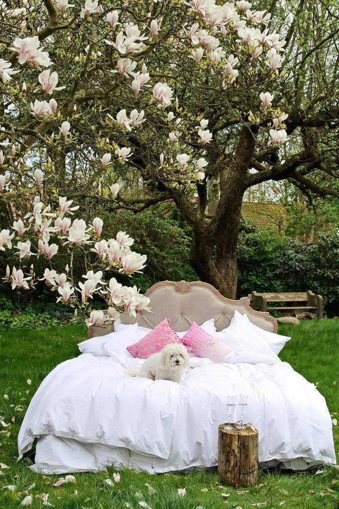 Add a little luxury from MOLLYSHOME.COM