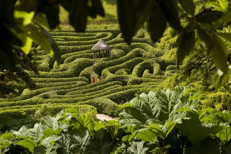 Worthy to get lost there..!! - Glendurgan Garden in Cornwall