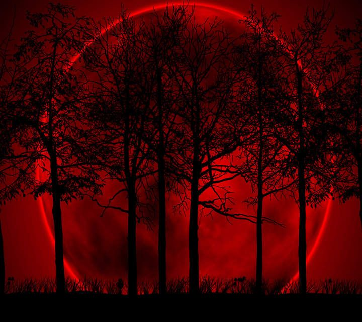 Night after night passes by but on this particular night the moon appeared blood red.. Trees like thunderous showdowns