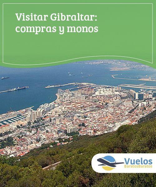 Visitar Gibraltar: compras y monos   Pura controversia, lo cierto es que visitar Gibraltar resulta una excursión curiosa y, entre ingleses, monos y tiendas da para un día... o dos.