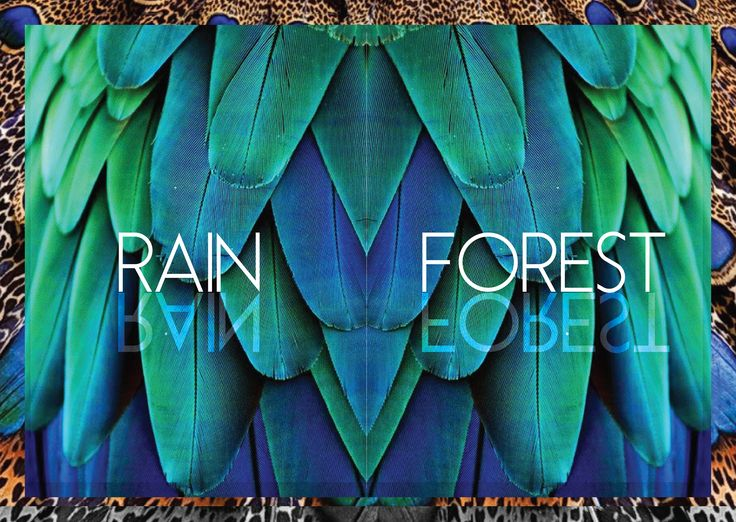 Rain Forest jewelry collection by Nefelia Architectural Fashion. Illustrations by #pinknanami.