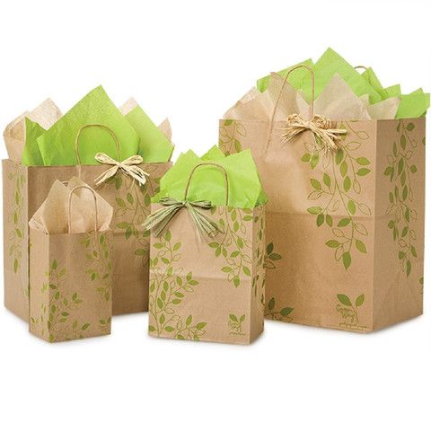 Paper Shopping Bags Ivy Lane Printed - 100% Recycled Bags – B2BWraps.com