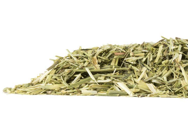 principales 25 ideas increíbles sobre avena sativa en pinterest magia herbaria el aceite