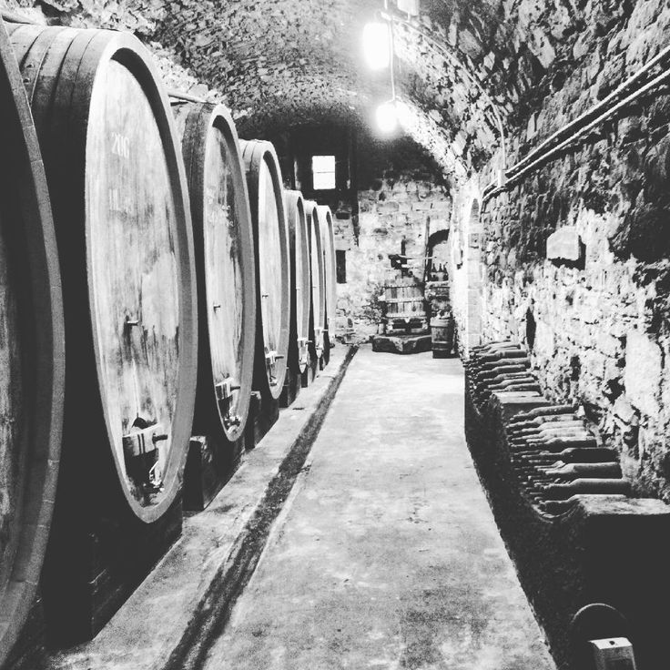 once a dungeon nowaday a wine cellar (part 1)!