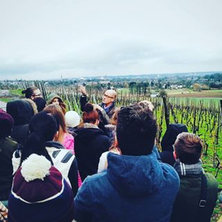 Learning about the wine regions of Maastricht - rough day for the Positive Psychology crew.
