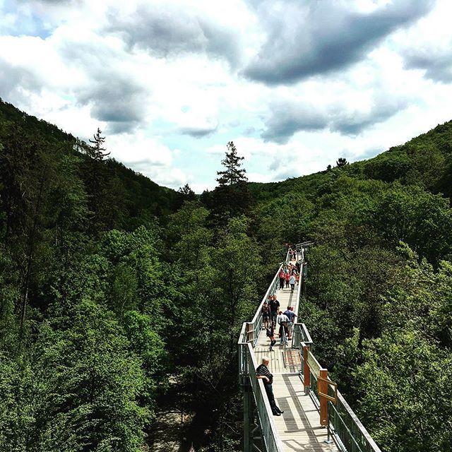 Wir lieben unsere #wipfel #wipfelwanderweg #harz #meinniedersachsen #loveit #justdoit #neverstopexploring #exploreharz #forest #nature #liebe #moments #epic #instalike #instagood