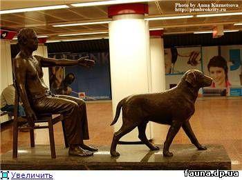 Похоже, что это памятник собаке-поводырю. Он стоит в метро