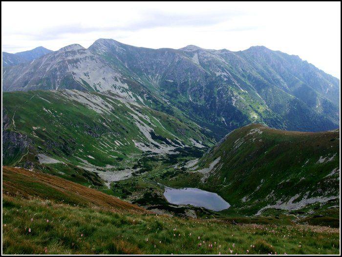 Jamnická dolina, Roháče