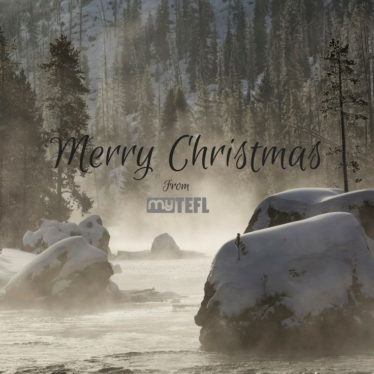 Wherever you are in the world – it's a very merry #Christmas from us all at myTEFL! Have a good one folks! #xmas #TEFLqual #TESOL #Adventure #dream #qualify #school #EFL #EFLteachers #wonder #getTEFL #myTEFL #getoutthere #believe #makeadifference #EFLcourses #TEFLcourses